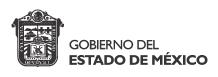 EDOMEX Logo